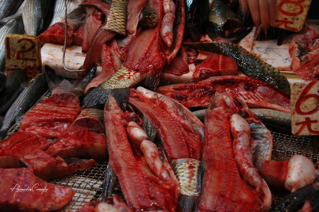 hong-kong-mercato-pesce-sangue